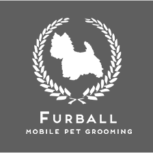 FURBALL THE GROOMER | Mobile Pet Grooming Singapore